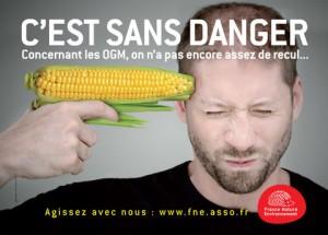 Ăn thực phẩm GMO khẳng khác nào tự kề dao vào cổ