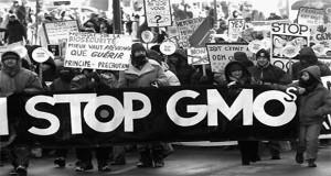 Biểu tình chống GMO tại Châu Âu