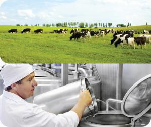 Profomilk cung cấp những loại sữa gì